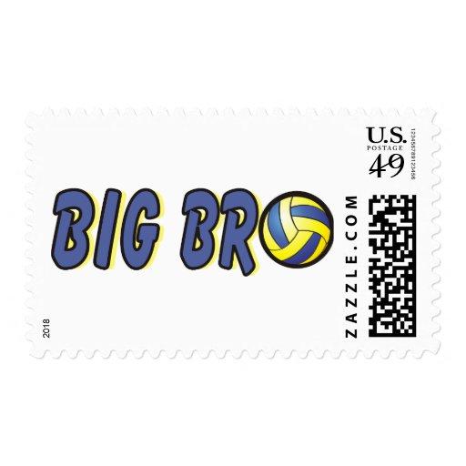 Cool Big Bro Shirt - Volleyball Theme Stamps