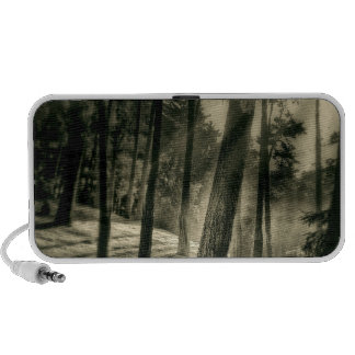 Cool Black and White Forest Sunshine Nature Speakers