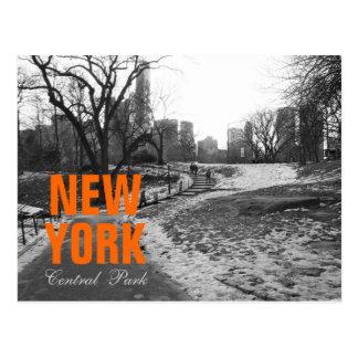 Cool Black White NY Central Park nr 1 Postcard