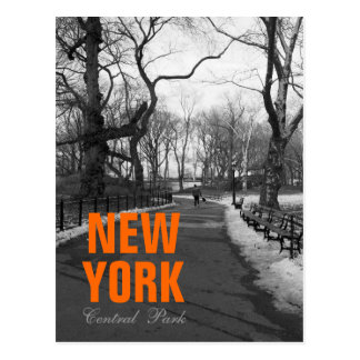 Cool Black White NY Central Park Post Cards