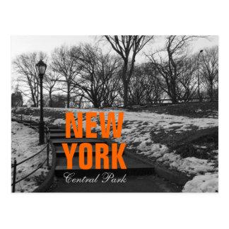 Cool Black White NY Central Park Postcard