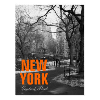 Cool Black White NY Central Park Postcard