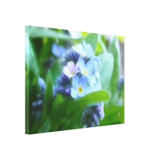 Cool Blue Forget Me Nots Gallery Wrapped Canvas