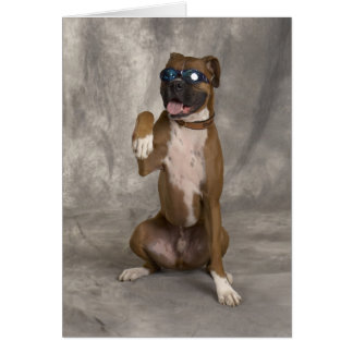 Cool Boxer Card