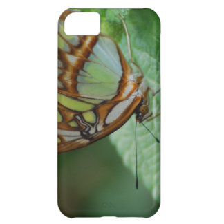 Cool Butterfly iPhone 5C Case