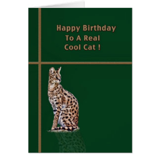 Cool Cat Birthday Card with Ocelot