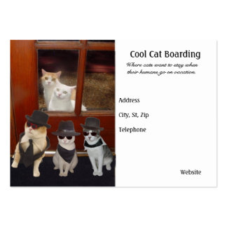 Cool Cat Boarding Large Business Card