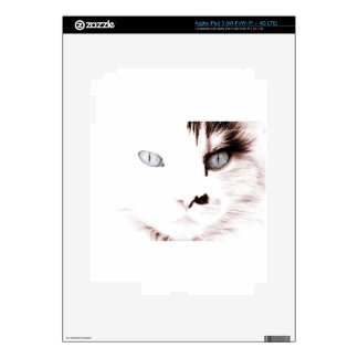 Cool Cat | Customizable Decal For iPad 3