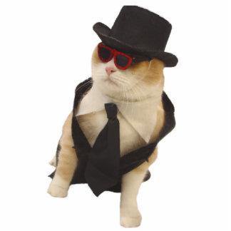 Cool Cat Cutout