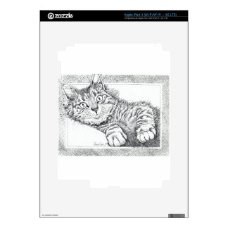 Cool Cat Decal For iPad 3