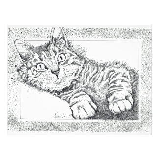Cool Cat Letterhead