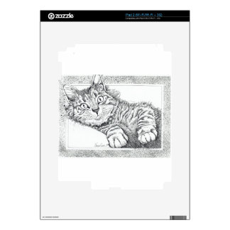 Cool Cat Skins For iPad 2