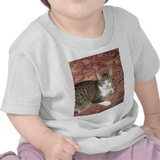 Cool Cat T Shirts