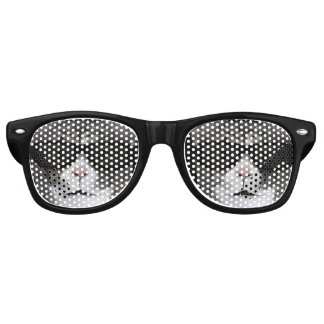 Cool Cat With Black Sunglasses