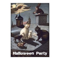 Cool Cats Halloween Party Invitation at Zazzle