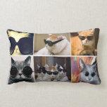 Cool Cats Lumbar Throw Pillow