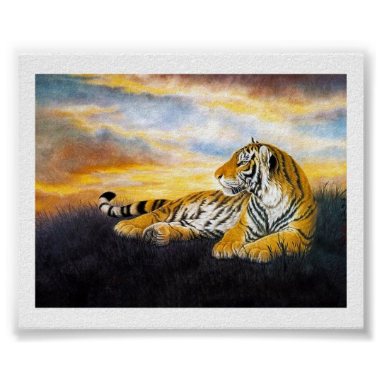 Cool chinese fluffy tiger rest sunset meadow art poster