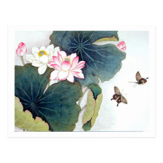 cool chinese lotus leaf pink flower butterfly art postcard