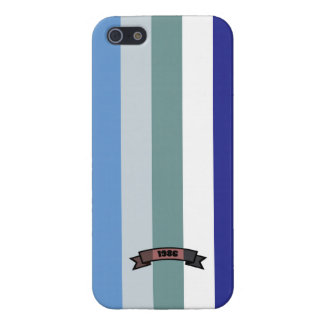 Cool Color Stripe Pattern iPhone 5 Case