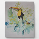 cool colorful bird display plaques