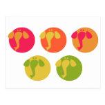 Cool colorful elepahnts elegant design post card