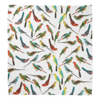 Cool colorful tropical watercolor birds pattern bandana