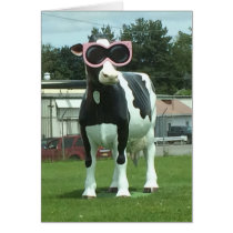 cool cow 1 card