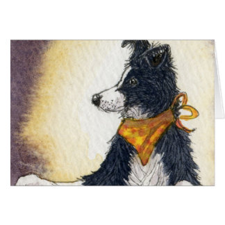 Cool cowboy collie carefully keeps an eye... greeting cards