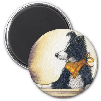 Cool cowboy collie carefully keeps an eye... magnet