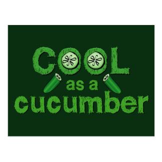Cool Cucumber postcard