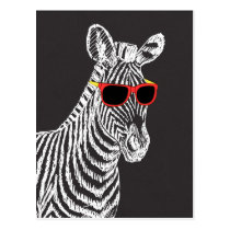 Cool cute funny zebra white sketch with glasses postcard