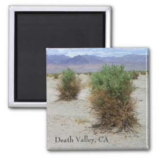 Cool Death Valley Magnet! Magnet
