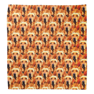 Cool Dog Art Doggie Golden  Retriever Abstract Bandana