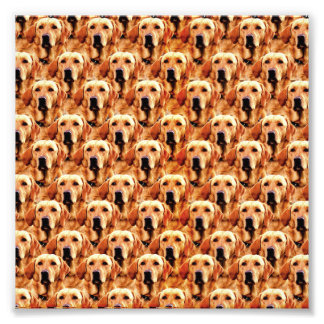 Cool Dog Art Doggie Golden Retriever Abstract Photo Print