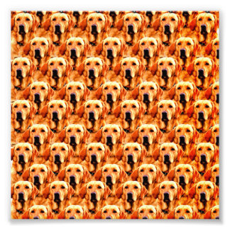 Cool Dog Art Doggie Golden Retriever Abstract Photo Print