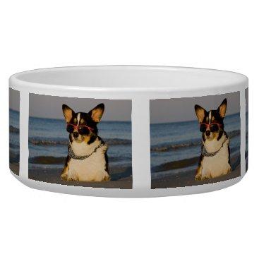 Beach Themed Cool Dog at the Beach Bowl