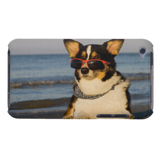 Cool Dog at the Beach Case-Mate iPod Touch Case