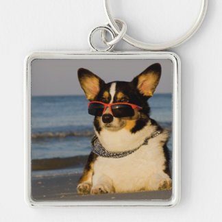 Cool Dog at the Beach Keychain