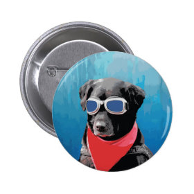 Cool Dog Black Lab Red Bandana Blue Goggles Buttons