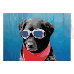 Cool Dog Black Lab Red Bandana Blue Goggles Greeting Card