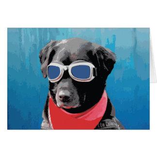 Cool Dog Black Lab Red Bandana Blue Goggles Card
