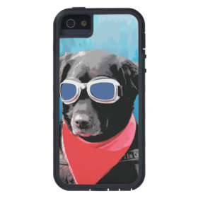 Cool Dog Black Lab Red Bandana Blue Goggles Cover For iPhone 5/5S