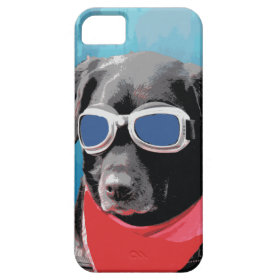 Cool Dog Black Lab Red Bandana Blue Goggles iPhone 5 Cover