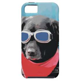 Cool Dog Black Lab Red Bandana Blue Goggles iPhone 5 Covers
