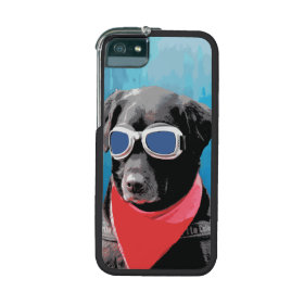 Cool Dog Black Lab Red Bandana Blue Goggles iPhone 5 Cases