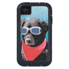 Cool Dog Black Lab Red Bandana Blue Goggles iPhone4 Case