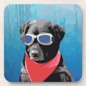 Cool Dog Black Lab Red Bandana Blue Goggles Beverage Coasters