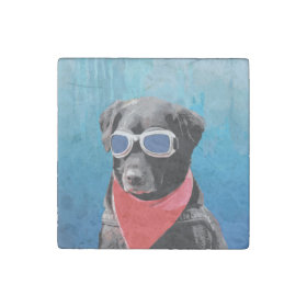 Cool Dog Black Lab Red Bandana Blue Goggles Stone Magnet
