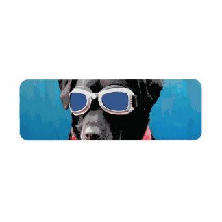 Cool Dog Black Lab Red Bandana Blue Goggles Label