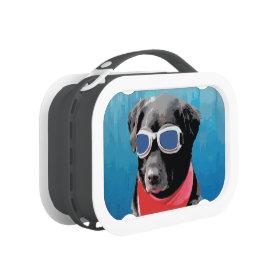 Cool Dog Black Lab Red Bandana Blue Goggles Lunch Box